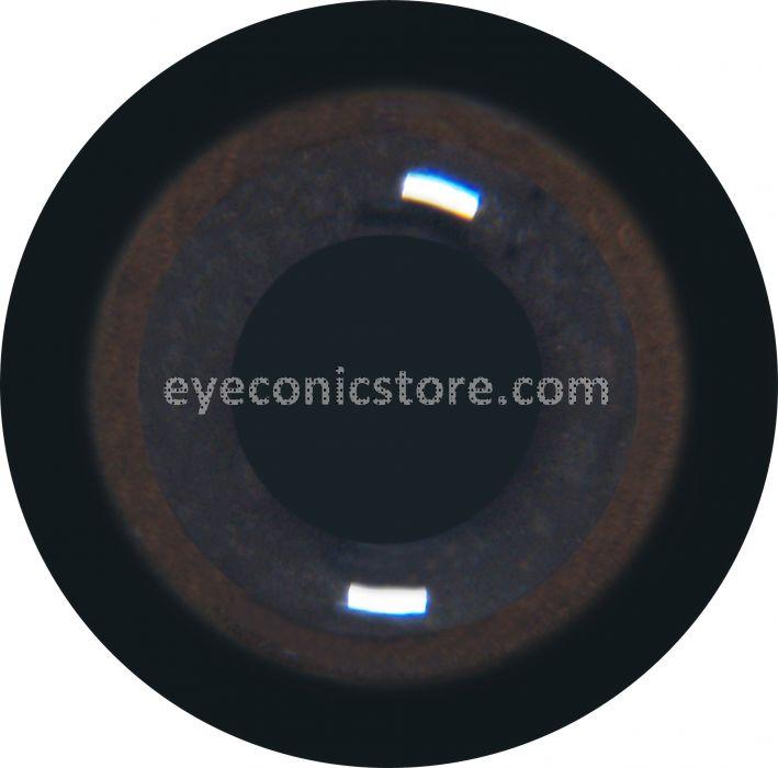 Abdim's Stork Eye