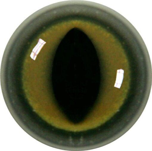 Cat Acrylic Eye