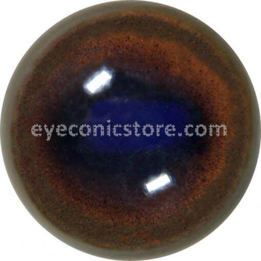 Chamois Eye